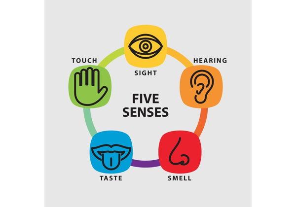 Интерактивные игры «5 чувств» и мастер-класс по созданию слайма в Просторум Мультиспейс