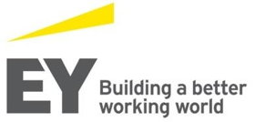 Ernst & Young CIS BV