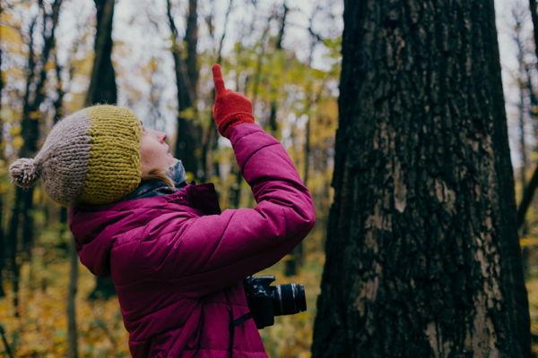 Щëлоковский хутор — лес, которому тысяча лет. Биология, мифы, реальность